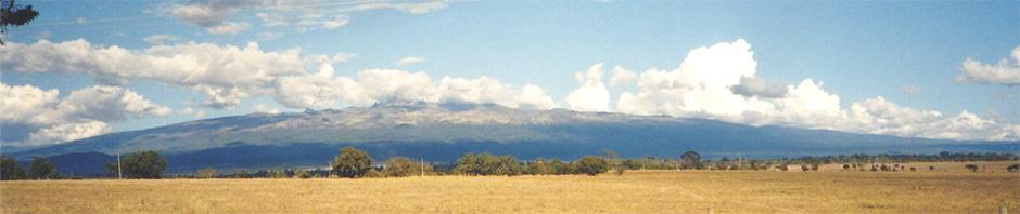 Mt. Kenya von fern